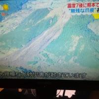 熊本地震の大規模土砂崩れ